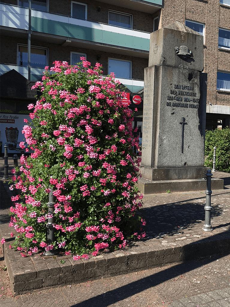 Export rosa