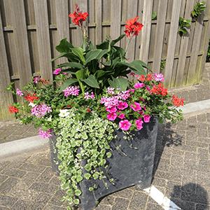 Blumenkästen Typ Zeewolde